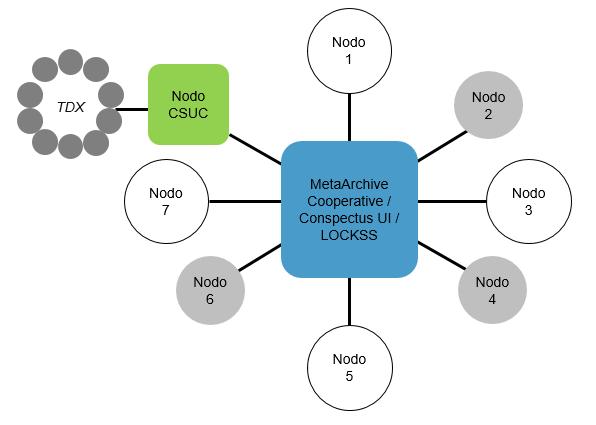 Figura 3. Modelo de la participación colaborativa del CSUC en la red MetaArchive Cooperative